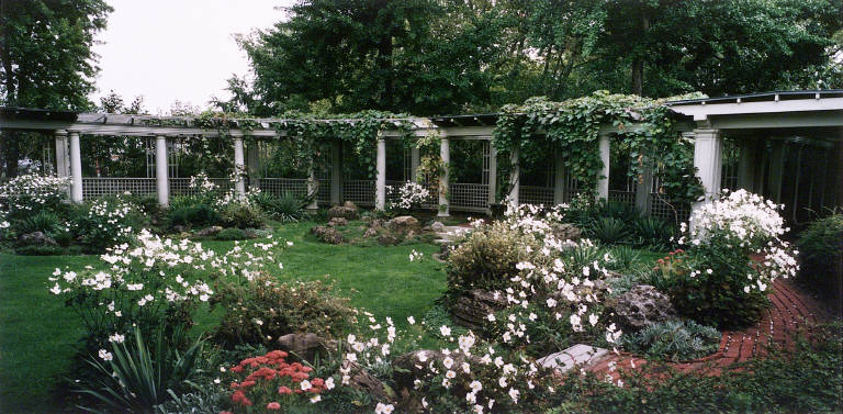 Rock Garden with Autumn Anenomes, George Eastman House, Rochester, N.Y.