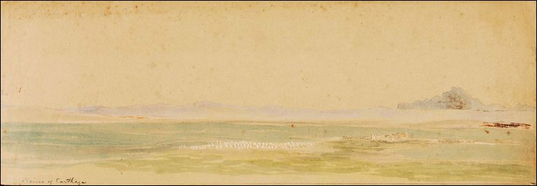 Plains of Carthage