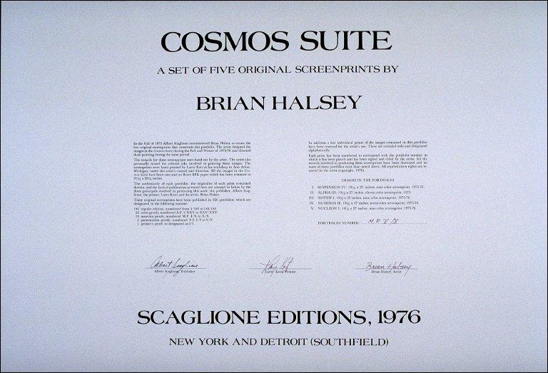 Cosmos Suite (portfolio cover)