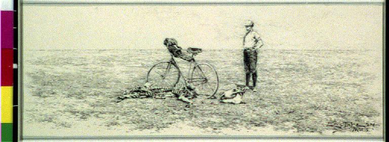 Bicycling, Gobi desert