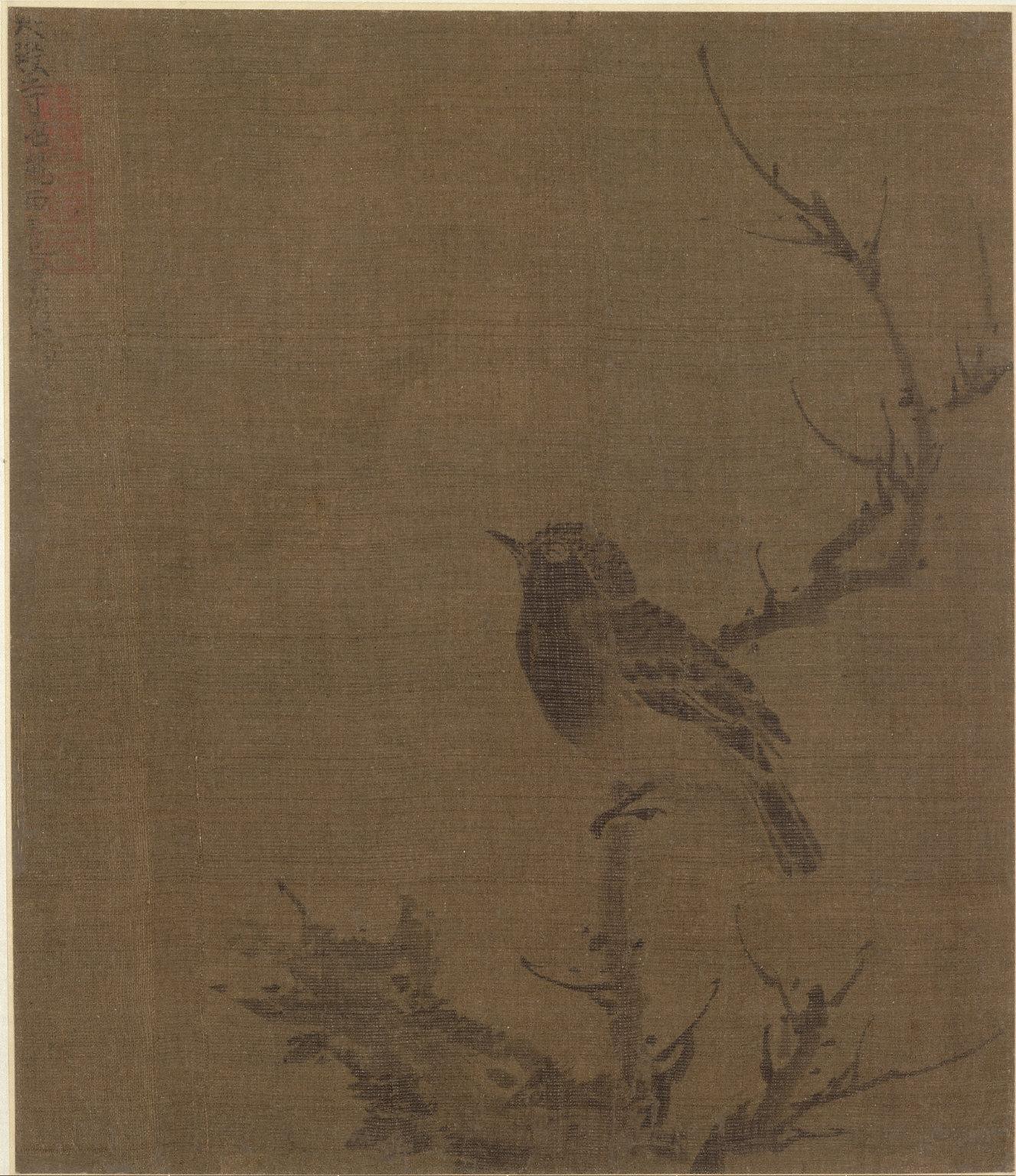 Sleeping Bird on a Prunus Branch