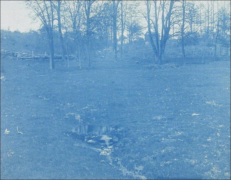Ipswich Landscape
