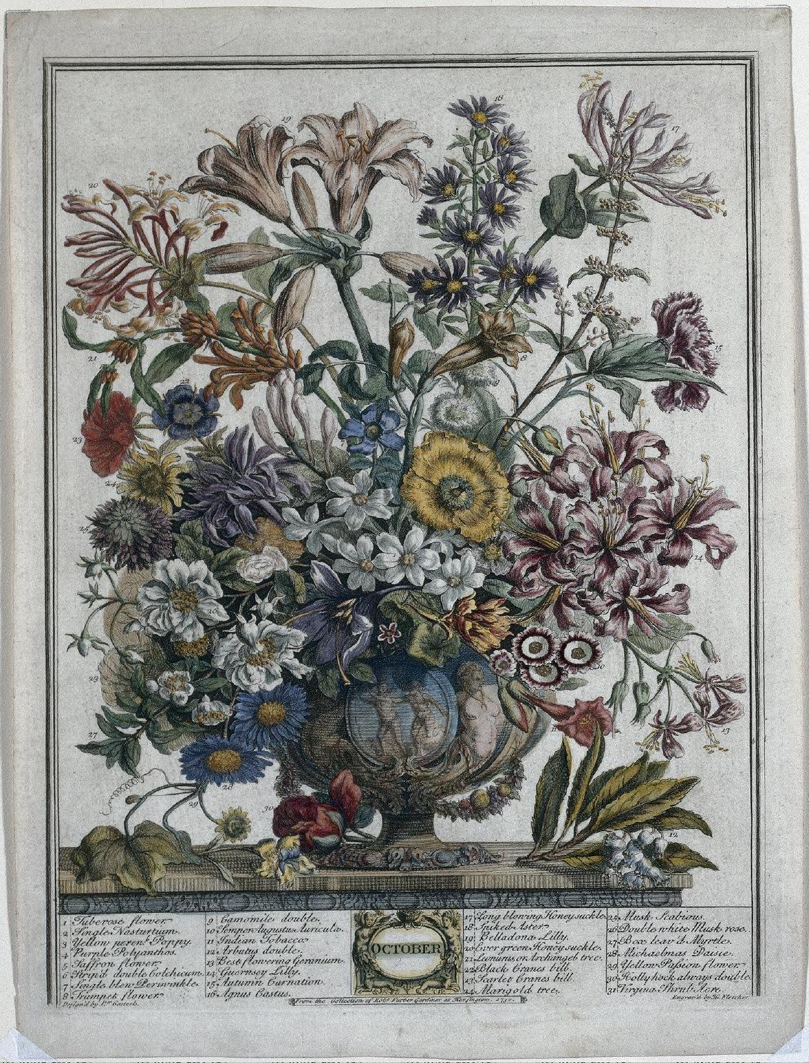 Twelve Months of Flowers: October