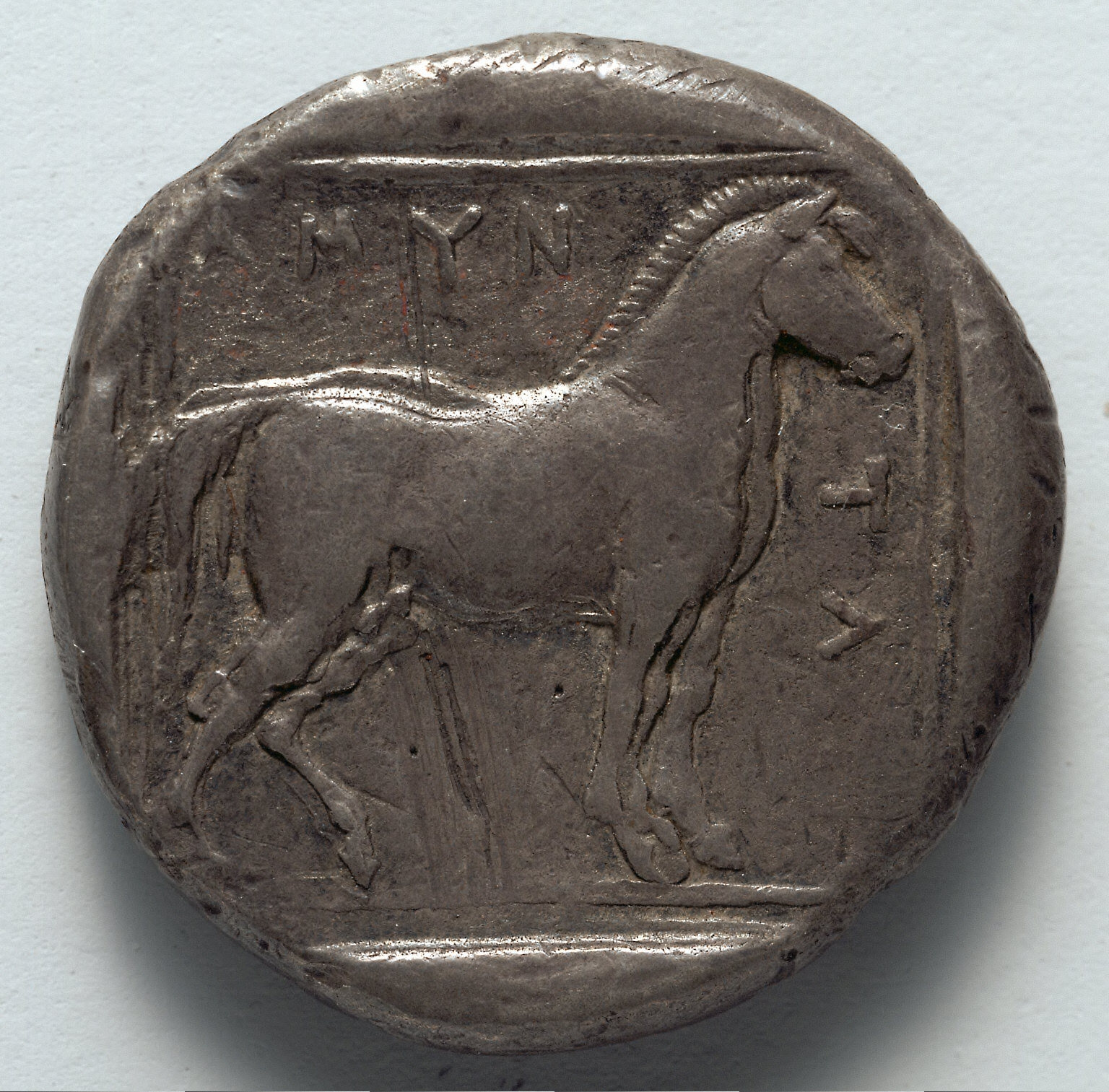 Stater: Free Horse (reverse)