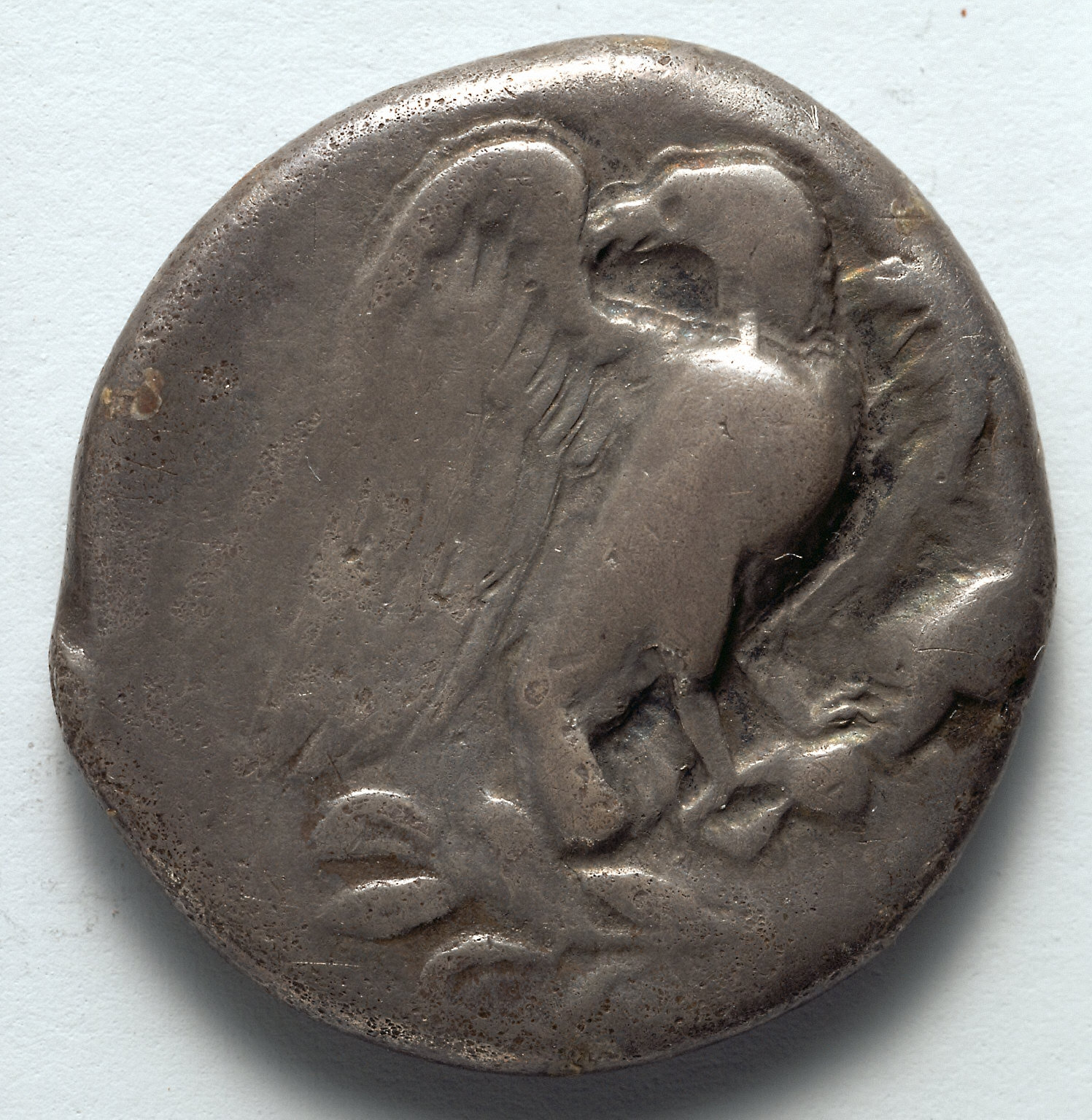 Stater: Eagle with Spread Wings on Olive Branch (obverse)