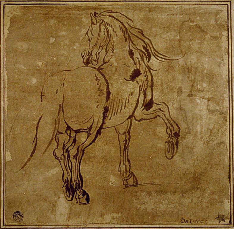 Horse (foreshortened)