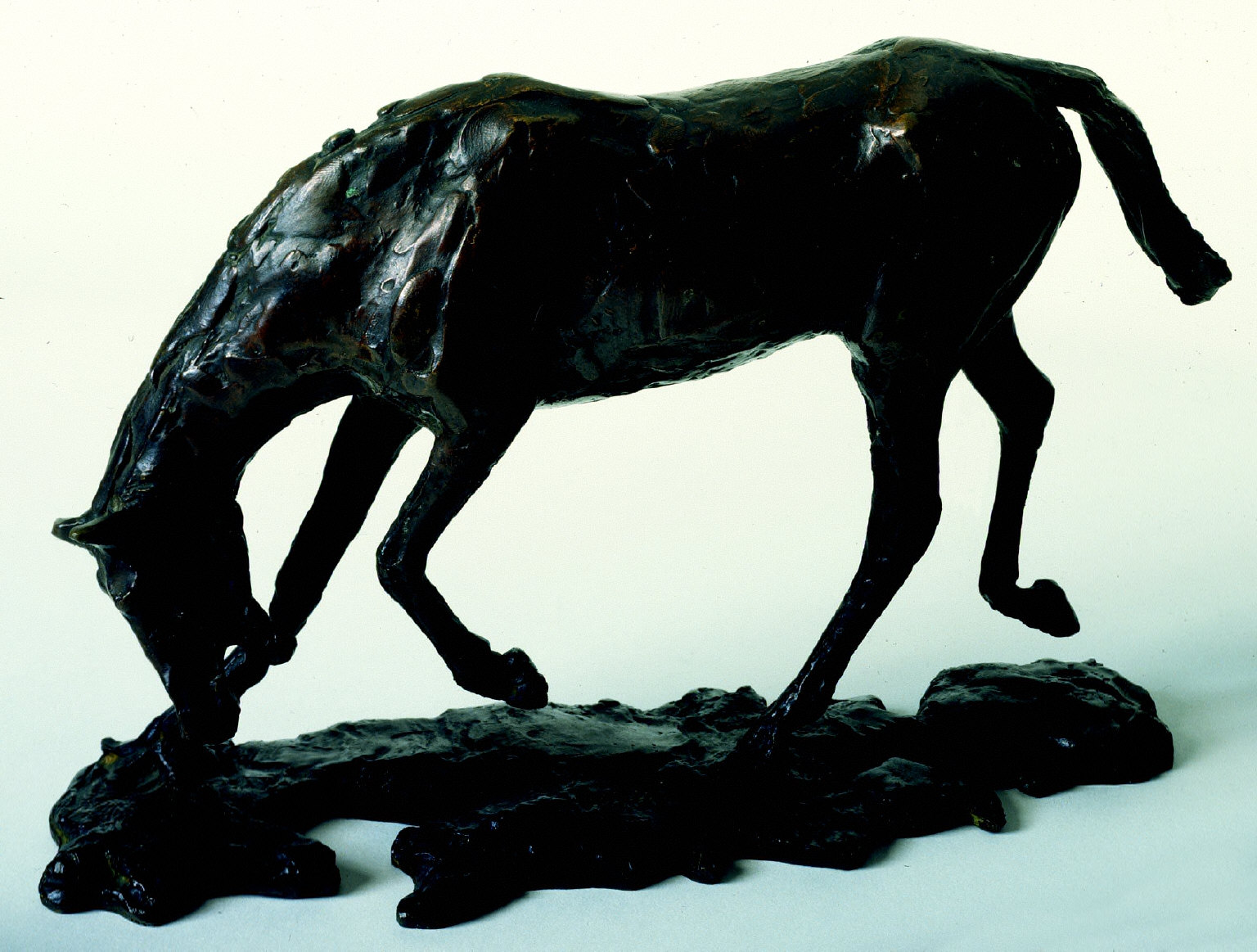 Study of a Horse