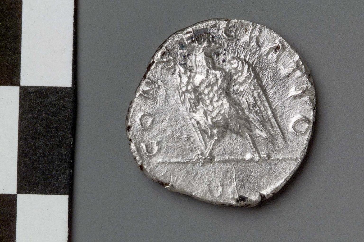 Denarius with bust of Marciana