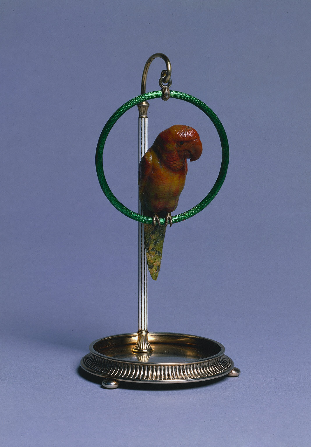 Parrot on a Perch