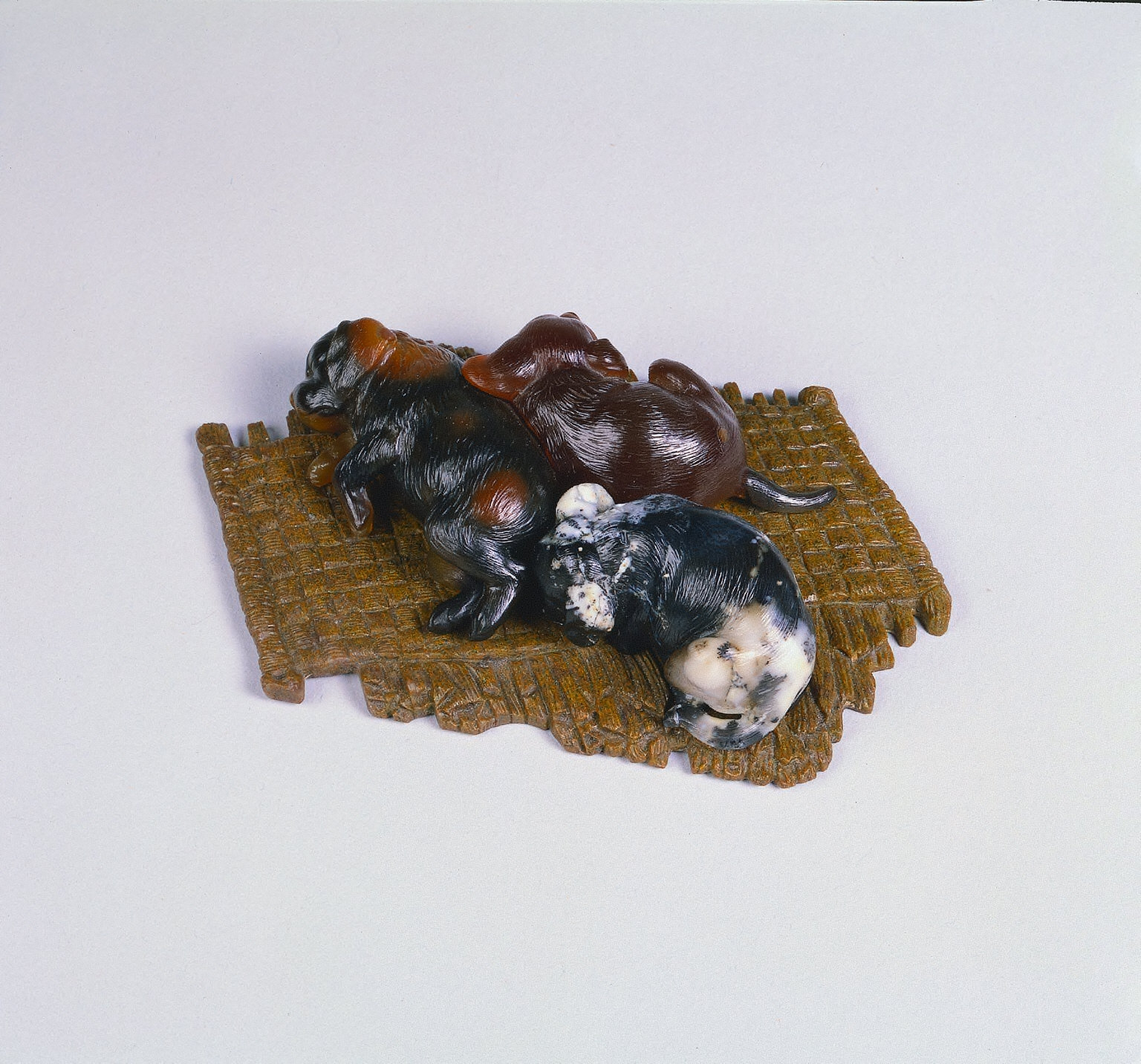 Puppies on a Mat