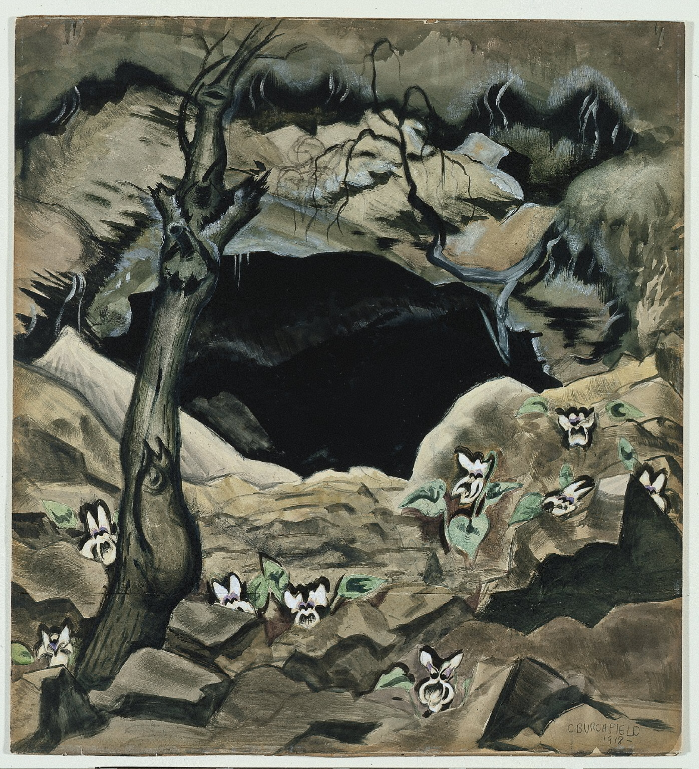 White Violets and Coal Mine