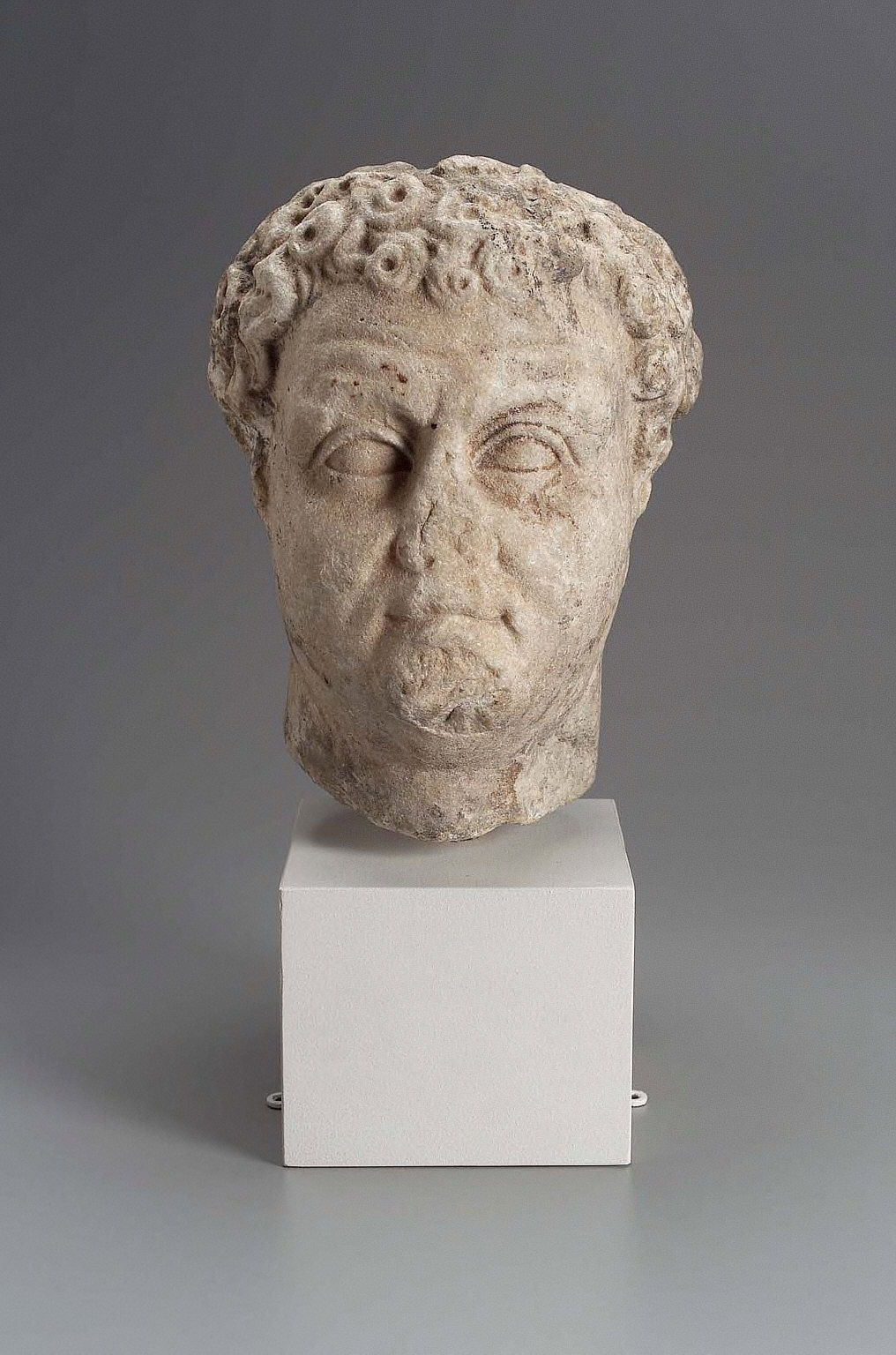 Portrait head of a man with curly hair