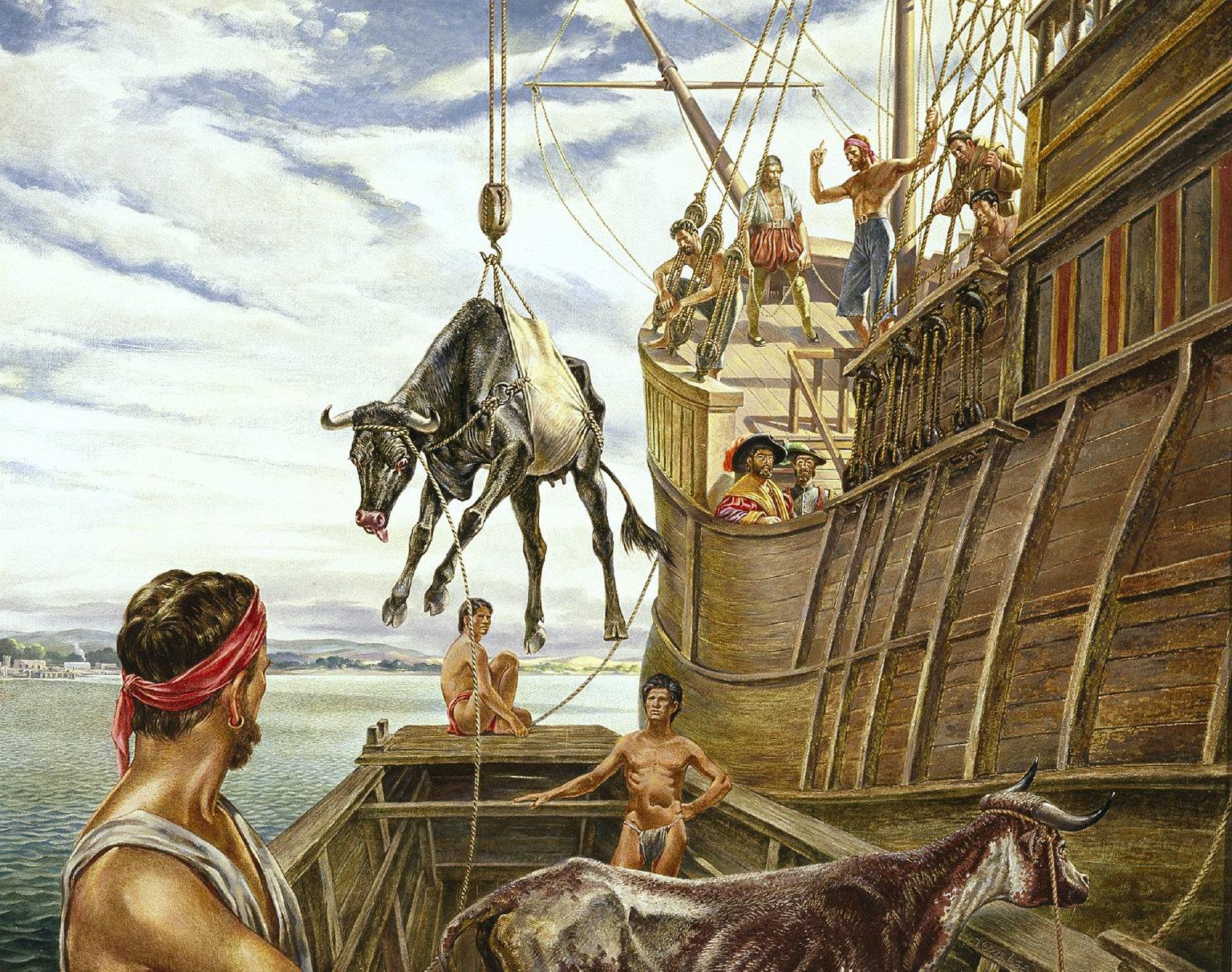 Unloading the First Cattle in North America, Vera Cruz, 1521