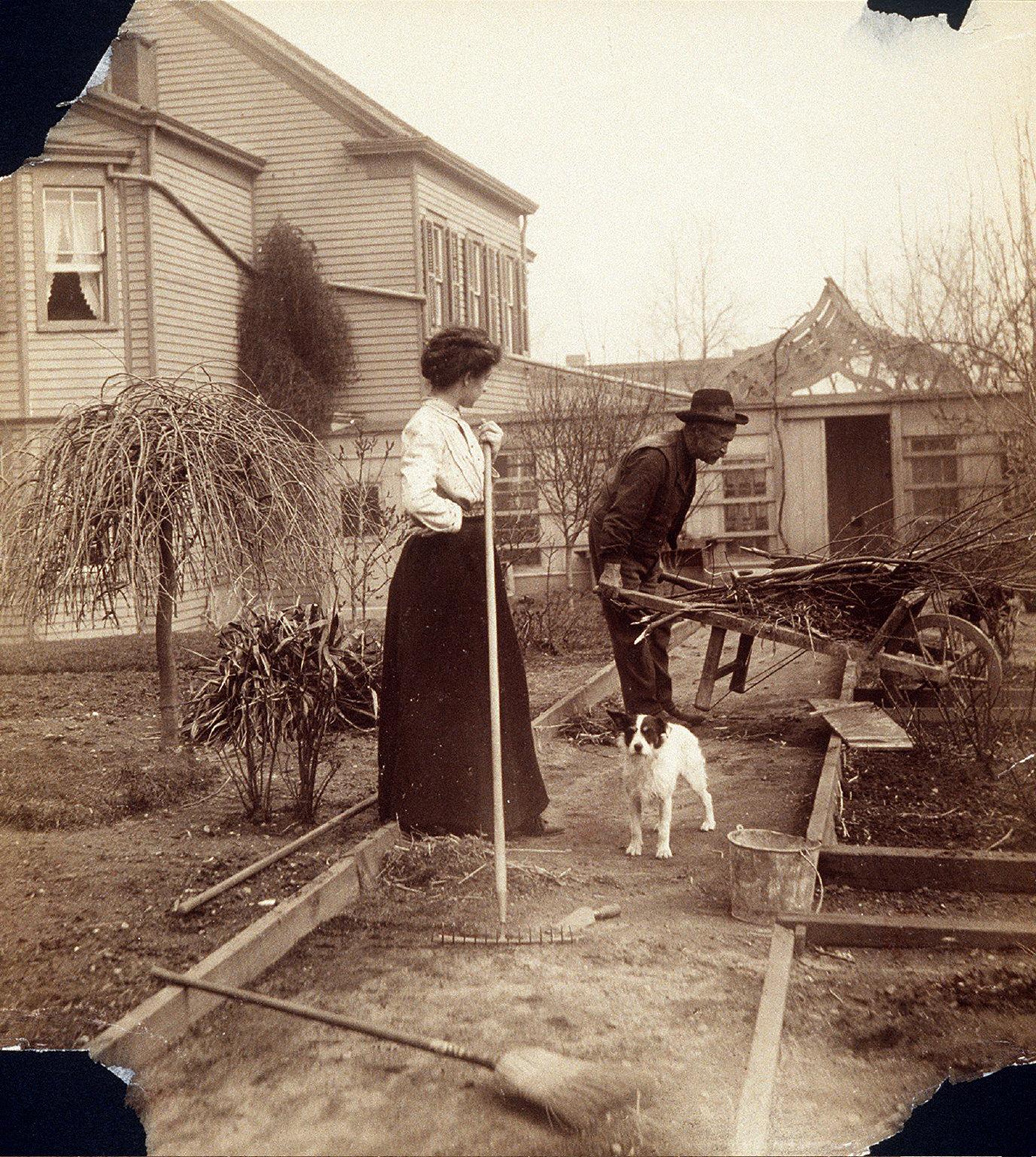 Woman and Man Gardening