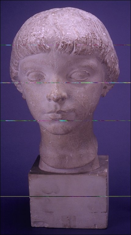 Head of a Young Child