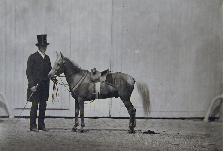 Bouton d'Or, Pony of the Prince Imperial with Groom