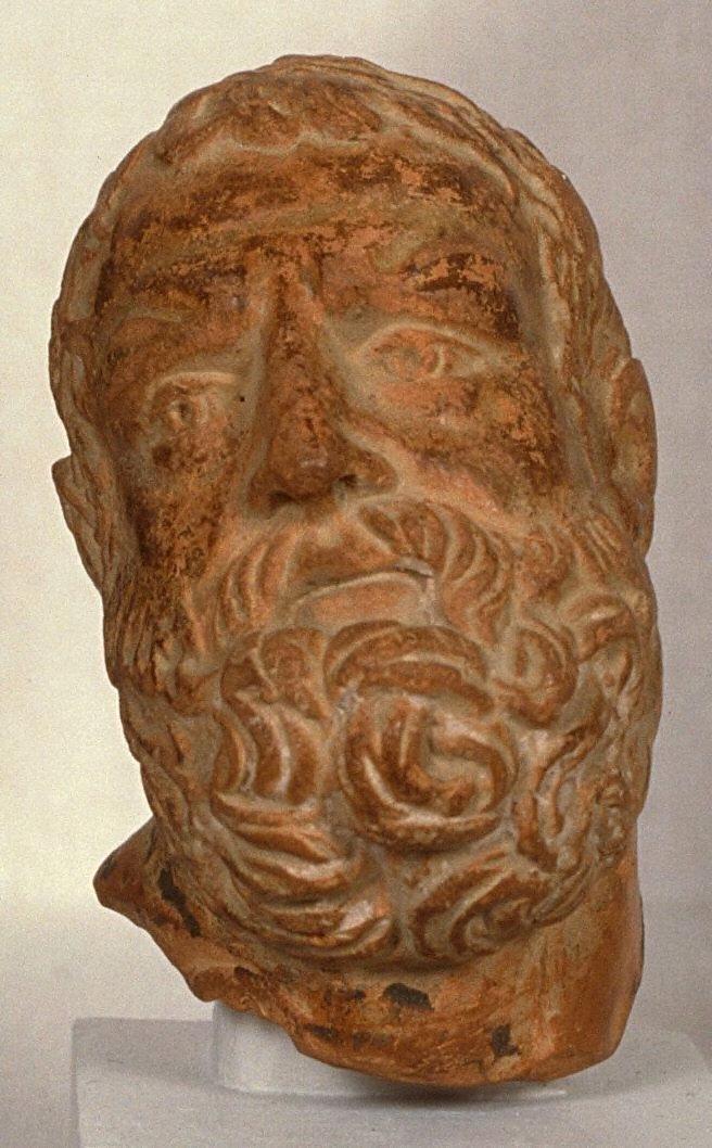 Head of bearded man