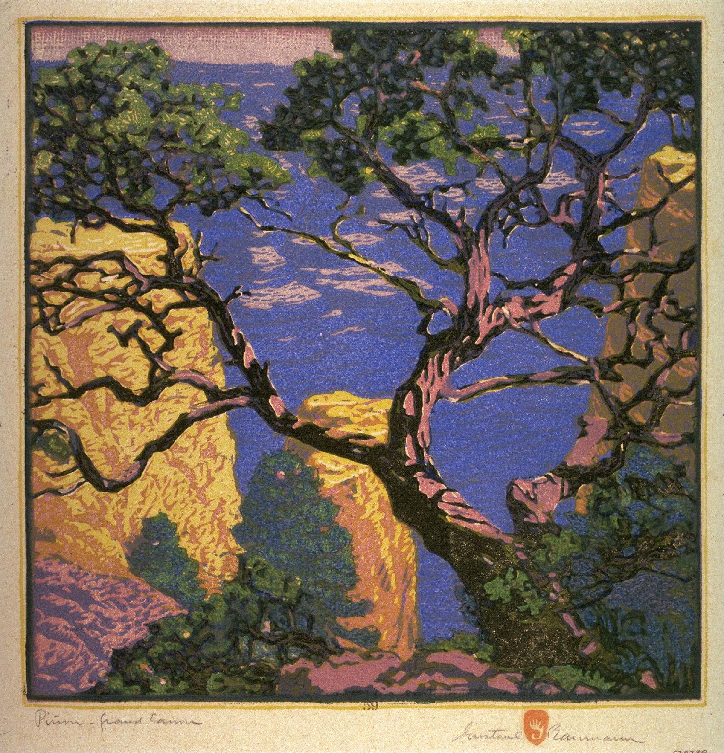 Pinon - Grand Canyon