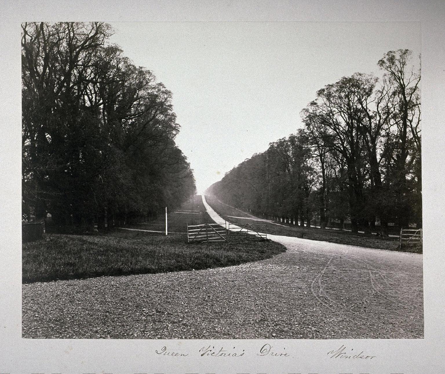 Queen Victorias Drive, Windsor