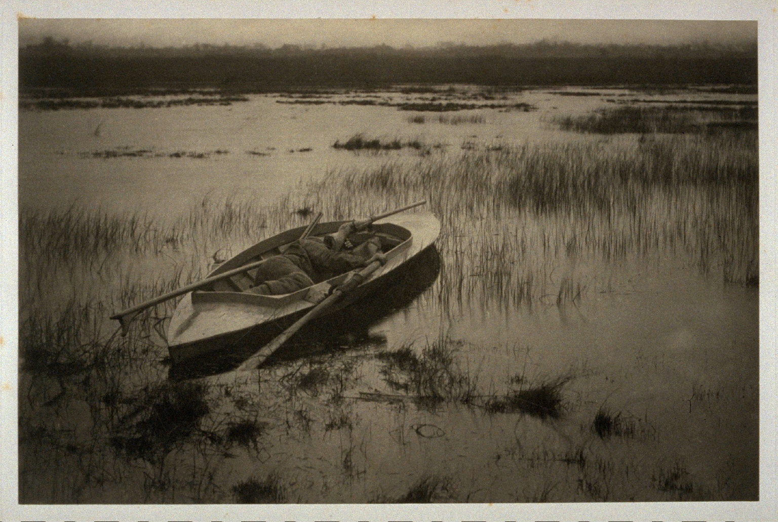 Gunner Working up to Fowl, Plate Nineteen of Life and Landscape on the Norfolk Broads