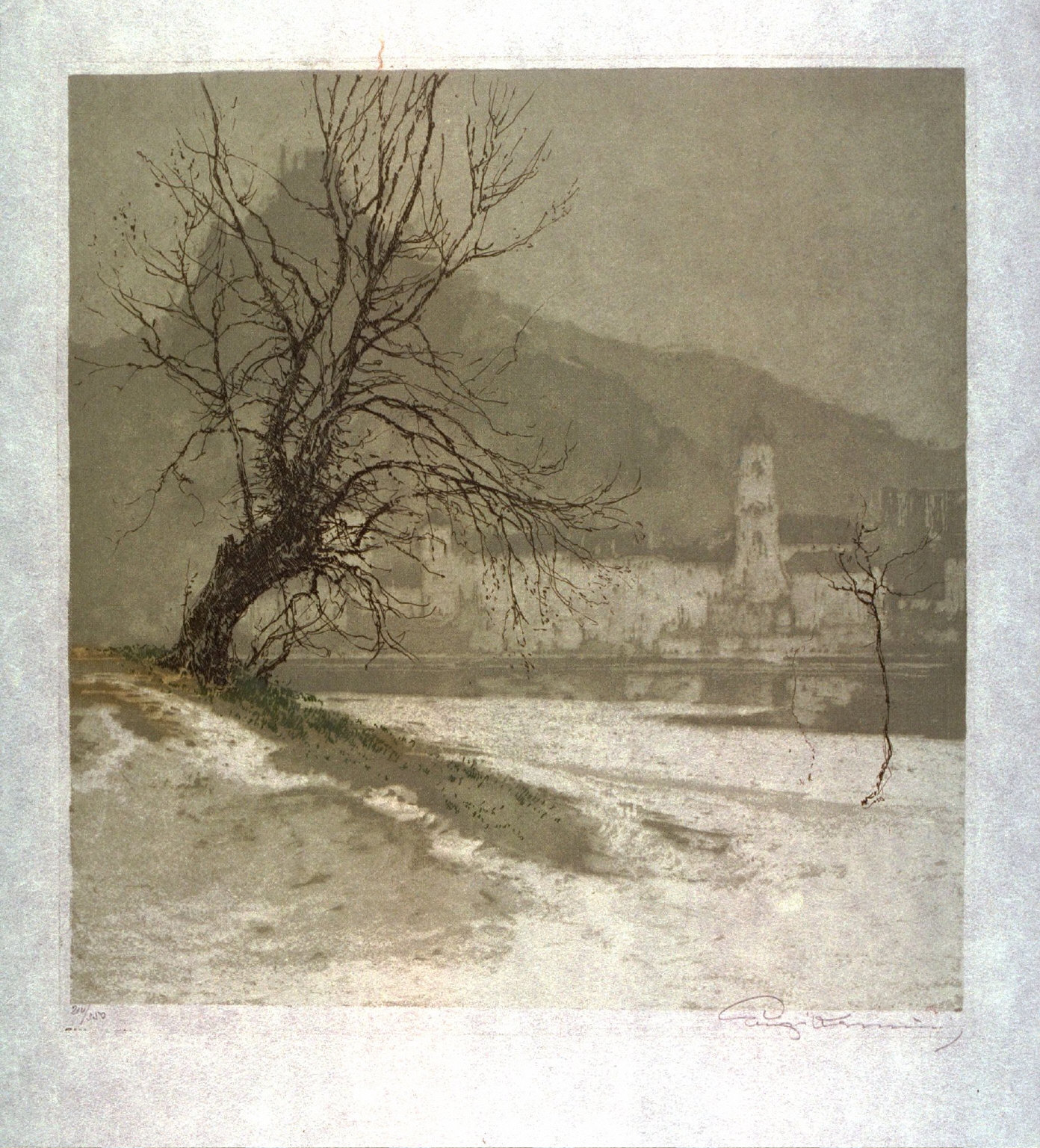 [Castle on the shore of a river with a tree in the foreground]