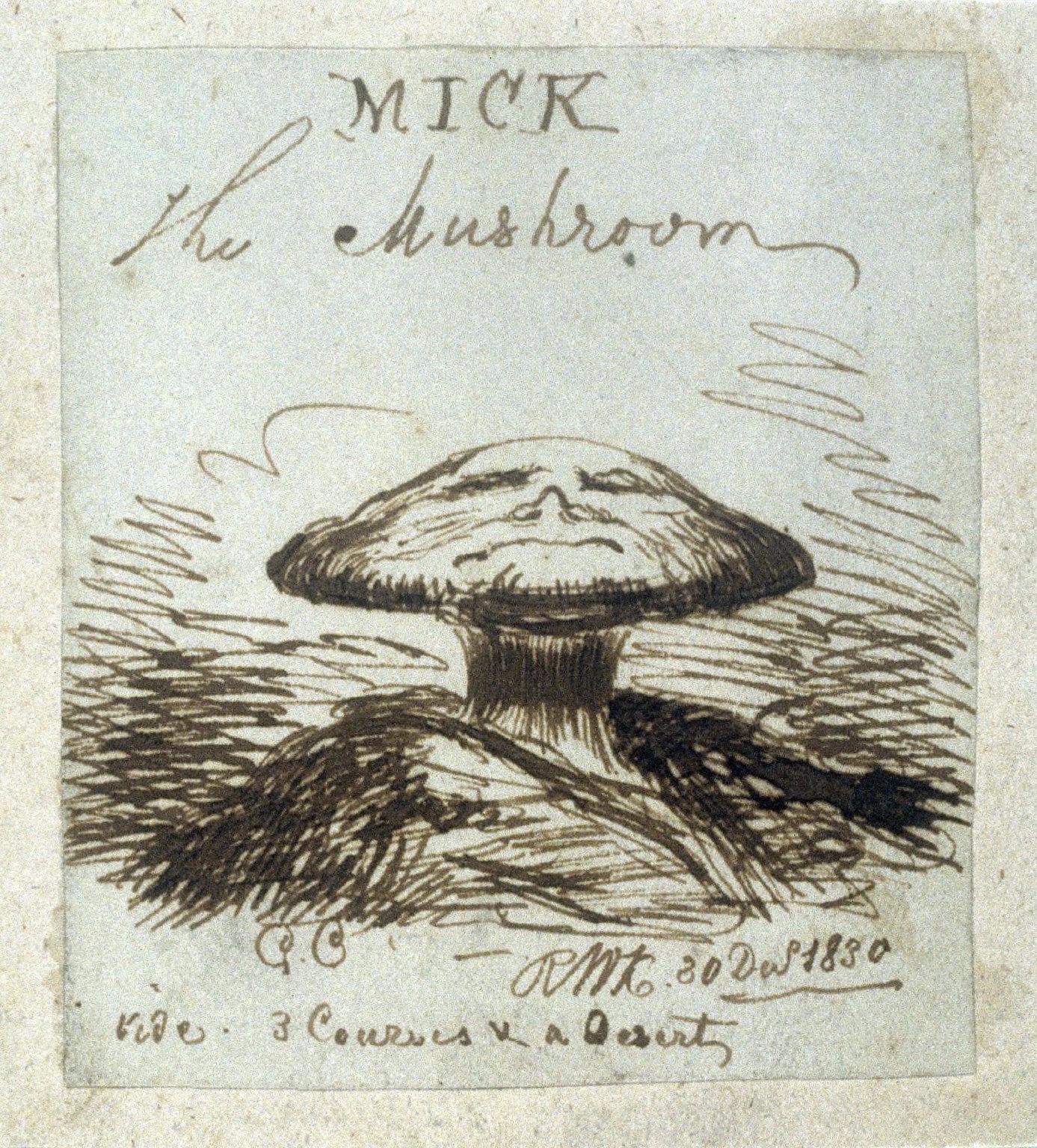 Mick the Mushroom
