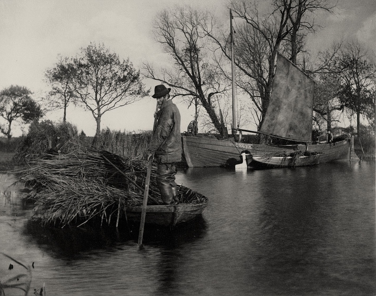 Life and Landscape on the Norfolk Broads