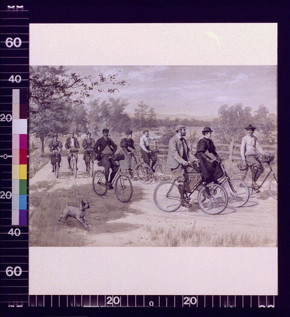 Tourists riding bicycles