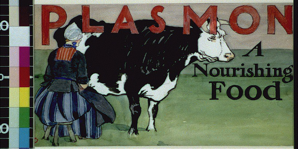 Plasmon : a nourishing food