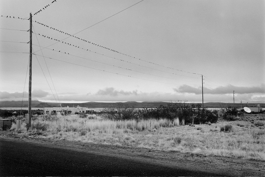 Birds on Telephone Lines -- Vicinity of Truth or Consequences, New Mexico