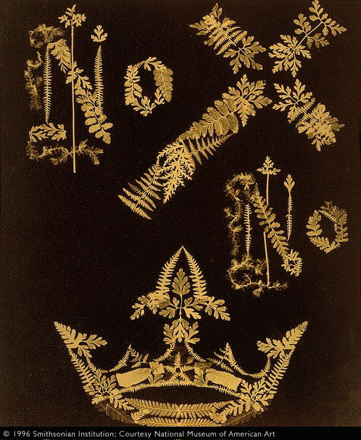 No Cross, No Crown