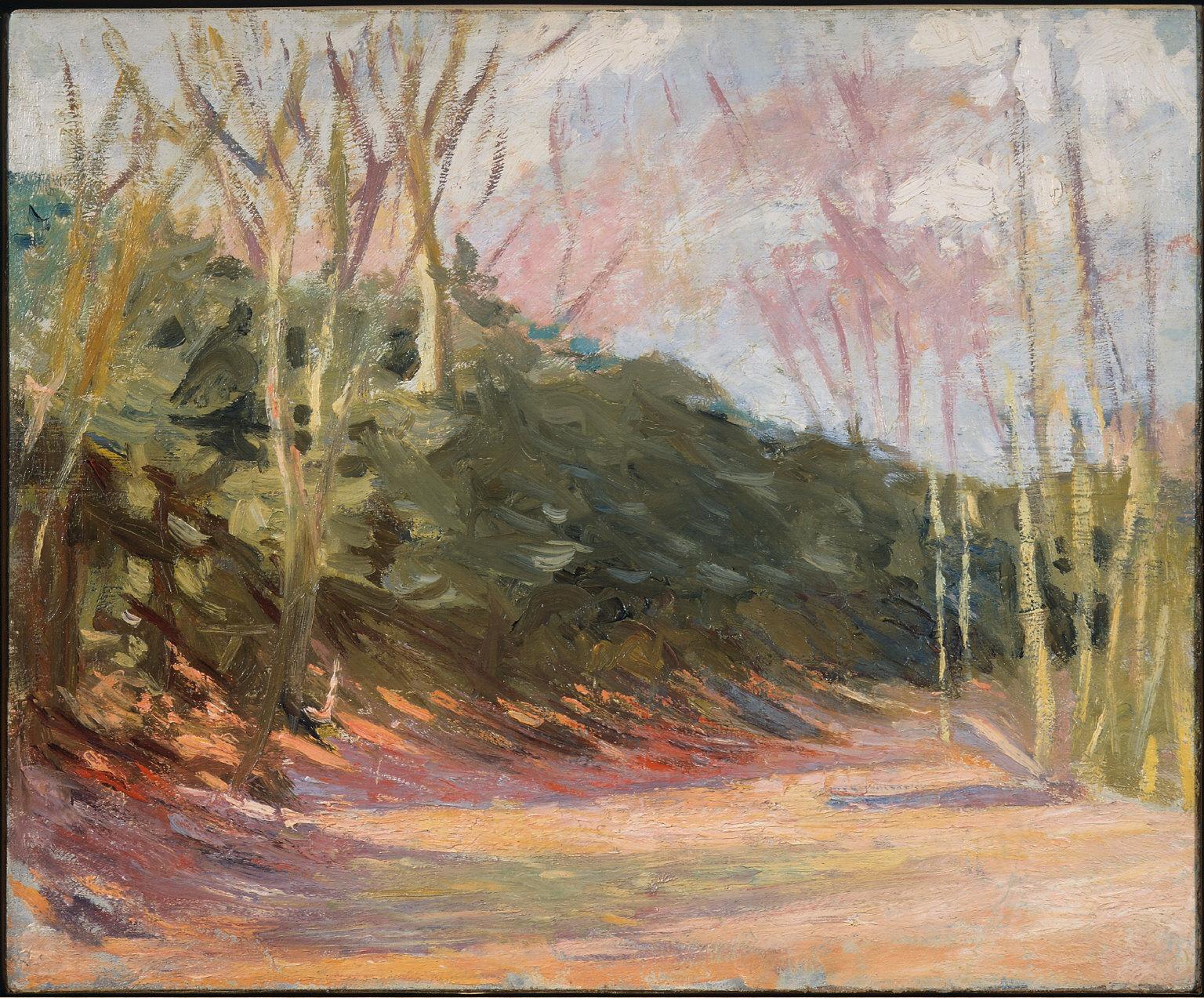 Trees in Sunlight, Parc de Saint-Cloud