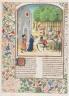 Le livre des prouffis champestres et ruraux, Book 7 On meadows and groves (folio 201v)