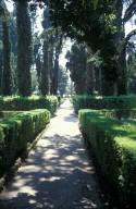 Cypress circle