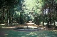 Fountain of Bacchus