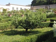 Main garden behind the villa