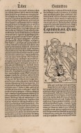 Opus ruralium commodorum