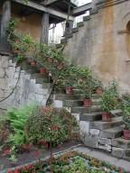Gardener's house