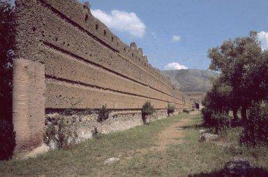 Ambulatory wall