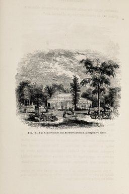 """A Treatise on the Theory and Practice of Landscape Gardening, Adapted to North America."""
