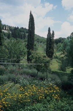 Villa I Tatti (complex)